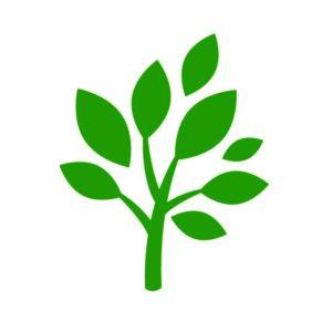 icon-biofuel
